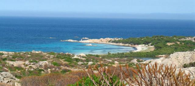 Asinara - Cala D'Andrea