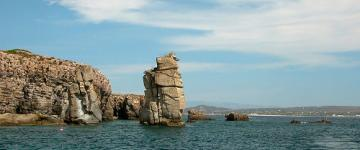 IMG L'isola di San Pietro - Viaggio a Carloforte tra spiagge e pescatori