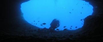 Diving e snorkeling in Sardegna